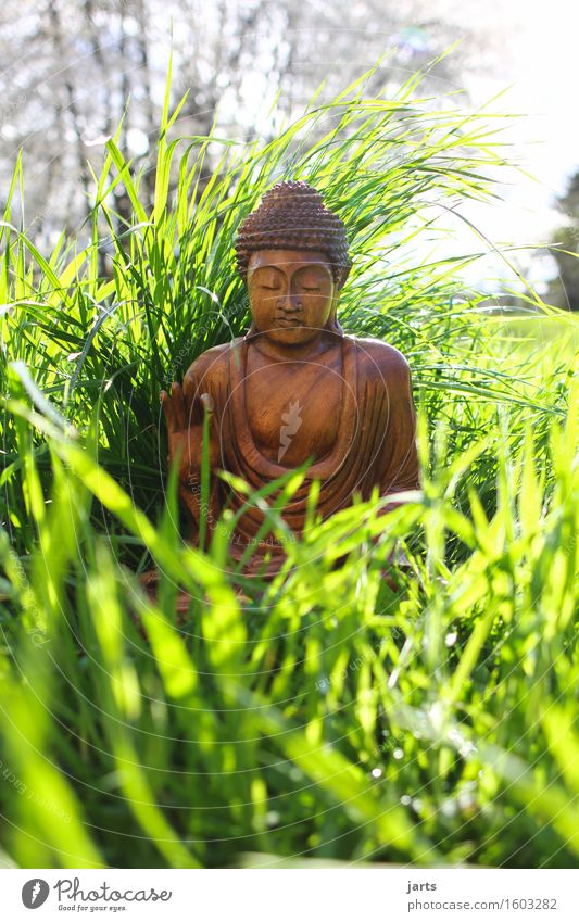 Human being Plant Calm Life Meadow Grass Wood Garden Decoration Sit Beautiful weather Hope Belief Serene Meditation Statue