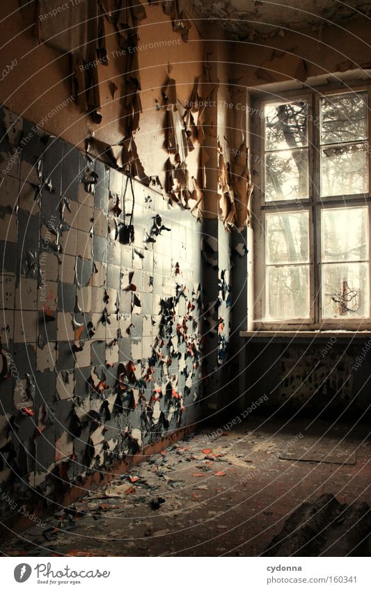 The time dokoriert around Window Room Location Decline Vacancy Light Transience Time Life Memory Tile Destruction Old Military building Trash Kitchen Derelict