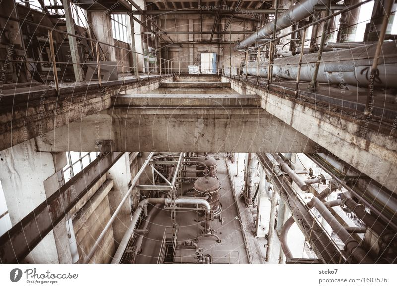 aspen grove Industrial plant Factory Ruin Past Transience Change Decline Industrial wasteland Factory hall Pipe Concrete Production plant Subdued colour