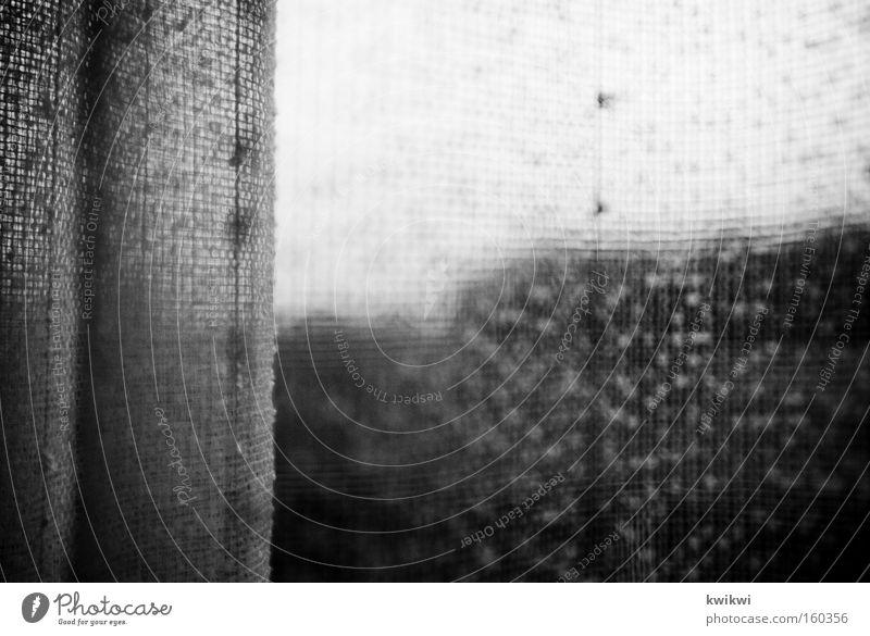 it's the curtain not the rain Living or residing Window Cloth Gray Curtain Vantage point Spy Window pane Slice Crocheted Things Black & white photo