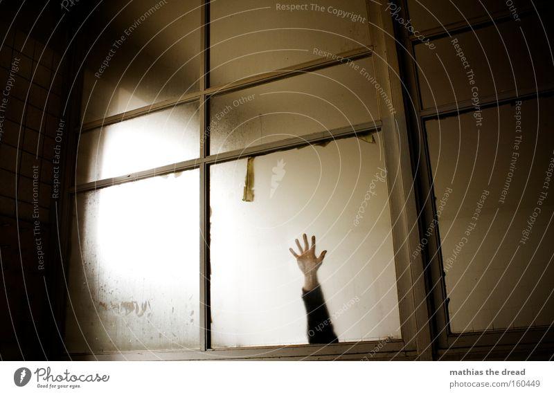 HELP I AM A STAR ... Window pane Frame Glass Room Architecture Dark Gloomy Threat Eerie Bright Shadow Hand Catch Grasp Panic Derelict Fear Arm