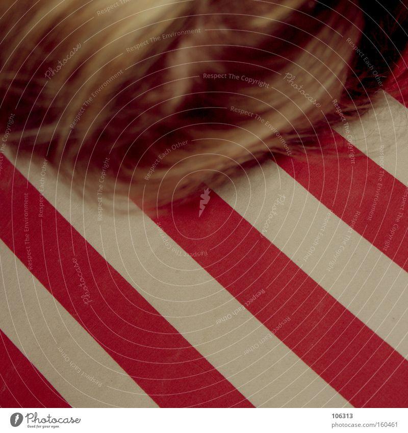 Photo number 115154 Red White Stripe Eastern American Chipmunk Pattern Colour Dye Line Diagonal Cushion Lie Sleep Hair and hairstyles Human being Blonde