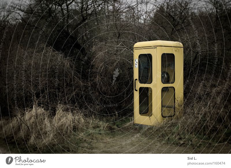 peripheral location Phone box Pallid Yellow Bushes Gray Loneliness Deutsche Telekom Telephone Hiddensee Winter Gloomy Remote Communicate Telecommunications