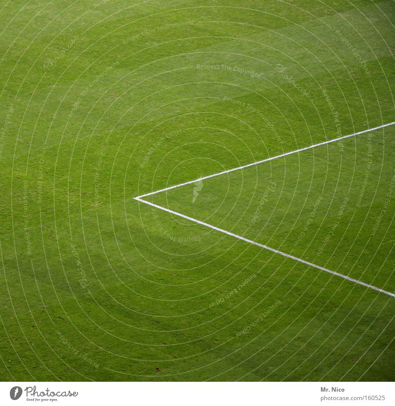 Green Sports Meadow Playing Grass Line Corner Lawn Leisure and hobbies Football pitch Triangle Ball sports Green space Penalty area