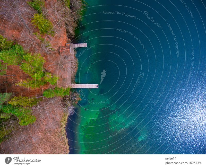 Lake / Lake. Bathing jetty, jetty. Aerial, drone. Forest Tree Harmonious Relaxation Calm Swimming & Bathing Hiking Fishing (Angle) Vacation & Travel Trip