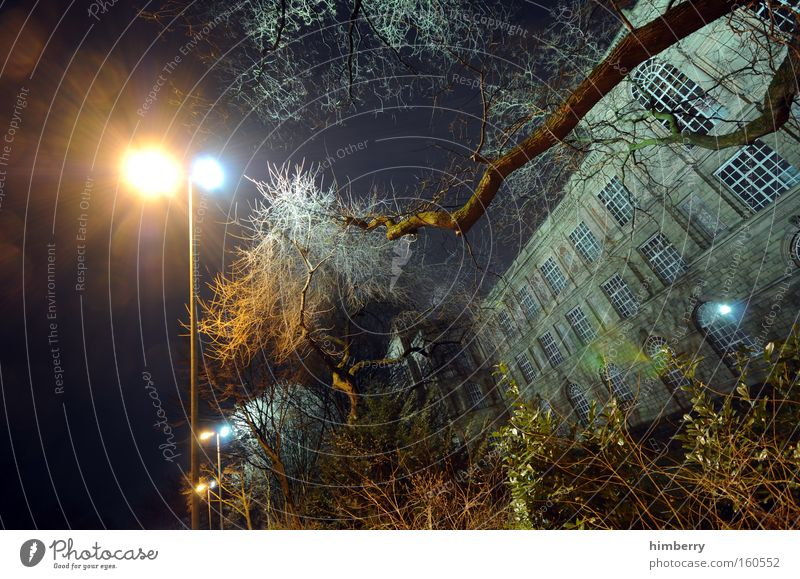 Tree Garden Park Building Architecture Facade Lantern Historic Duesseldorf Floodlight Eerie Old building Witching hour Haunted house Ghost town