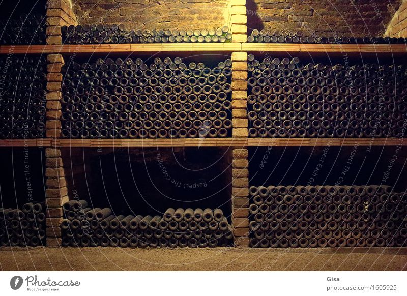 Wine cellar (wine bottles) Agriculture Forestry Wine growing Storage Austria Europe Village Cellar wall Bottle Bottle of wine Brick Stone Sand Wood Glass Metal