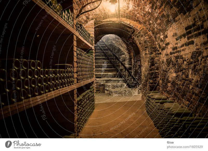 Wine cellar (staircase) Gastronomy Storage Cellar arch Cellar stairs Bottle of wine Wine growing Winegrower Austria Europe Village Cellar wall Stairs Stone Sand