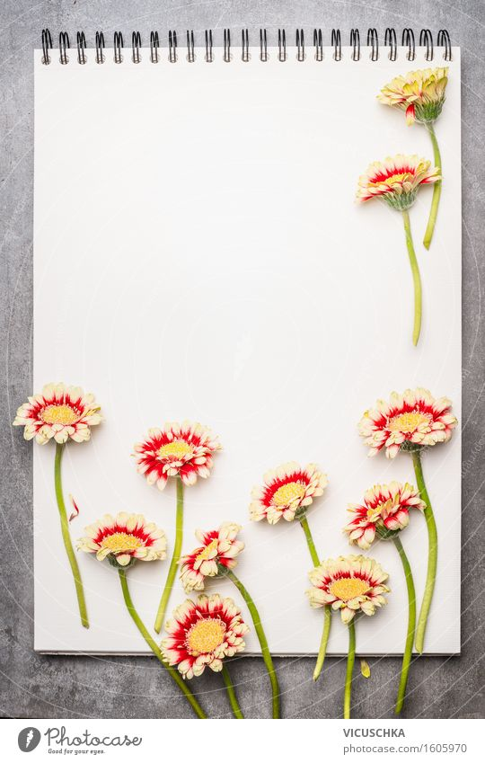 Notebook with beautiful flowers Style Design Life Garden Study Gardening Office Business Plant Leaf Blossom Paper Piece of paper Sign Retro Gerbera Magazine