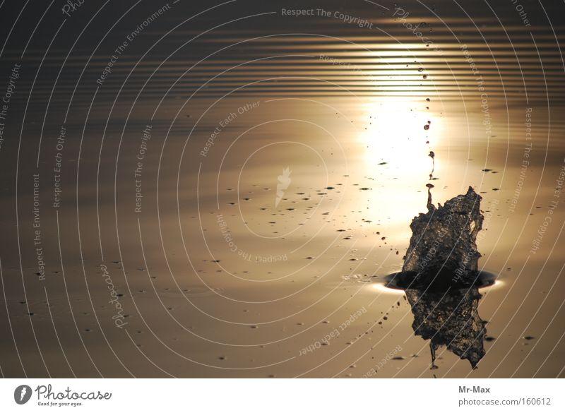 Sunsplash Sunset Water Lake Splash of water Calm Body of water Moody Inject Symphony sunshine
