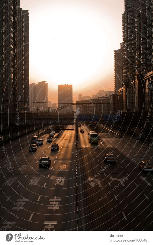 Broad meets high China Shanghai Sun Street Motor vehicle High-rise Sunset Bridge Highway Asia Transport Car