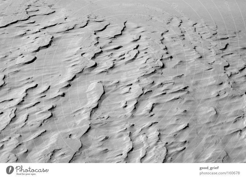 Winter Cold Snow Landscape Wind Africa Desert Gale Beach dune