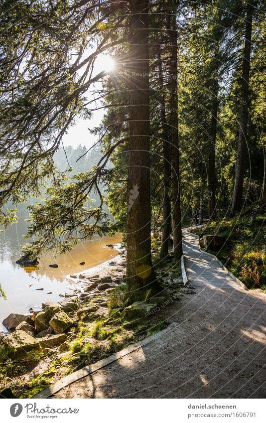 Nature Vacation & Travel Summer Relaxation Landscape Calm Joy Mountain Lanes & trails Movement Contentment Hiking Trip Joie de vivre (Vitality) Lakeside