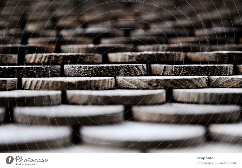 Schindler's List Calm Stairs Wood Stripe Old Round Brown Roofing tile Depth of field Regular Graphic Rustic Monochrome Close-up Detail Macro (Extreme close-up)