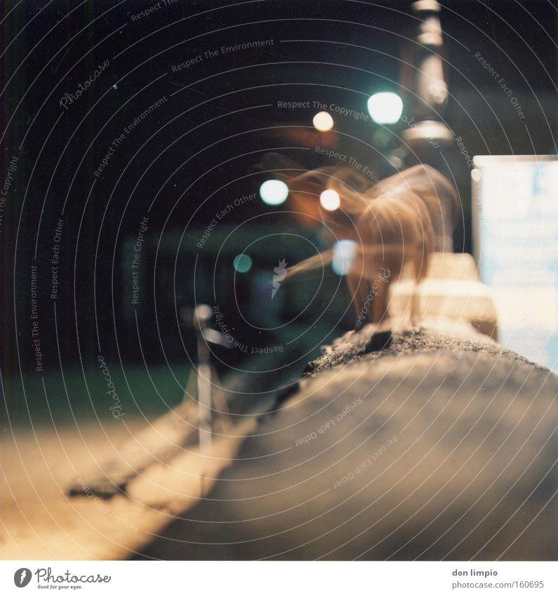 fidgety rat Dog Rat Ghosts & Spectres  Living thing Motion blur Night Light Medium format Analog Long exposure