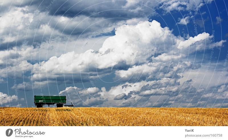 hang Trailer Summer Harvest Field Straw Clouds Sky Blue Grain Blade of grass White
