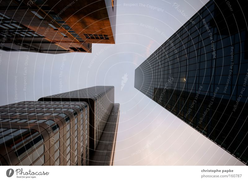 High-rise buildings in Frankfurt am Main from a frog's eye view built Downtown Banking district Architecture Bank building office Colour photo Capital city