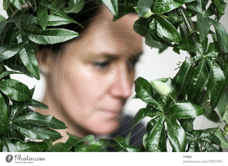 Human being Woman Plant Green Leaf Calm Face Adults Emotions Style Lifestyle Moody Meditative Decoration Idyll Romance