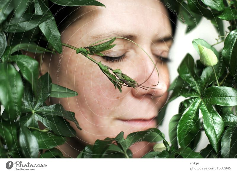 Human being Woman Nature Plant Beautiful Relaxation Leaf Calm Face Adults Life Natural Contentment To enjoy Romance Well-being