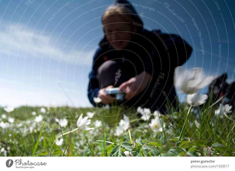 Photograph flowers Woman Take a photo Camera Flower Meadow Nature Enthusiasm Technology Attempt Interest Sky Blue Spring Young woman Photographer Blur