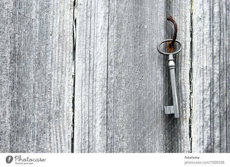 key board Wood Metal Rust Key Wooden wall Nail Old Brown Gray Silver White rusty warped Colour photo Subdued colour Exterior shot Deserted
