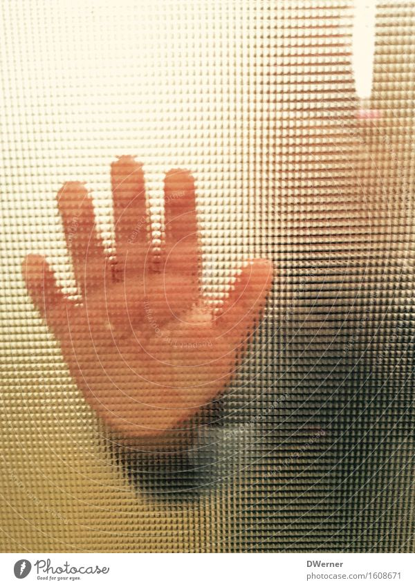 Human being Child Hand Joy Girl Emotions Boy (child) Happy Freedom Contentment Door Glass Success Happiness Baby Study