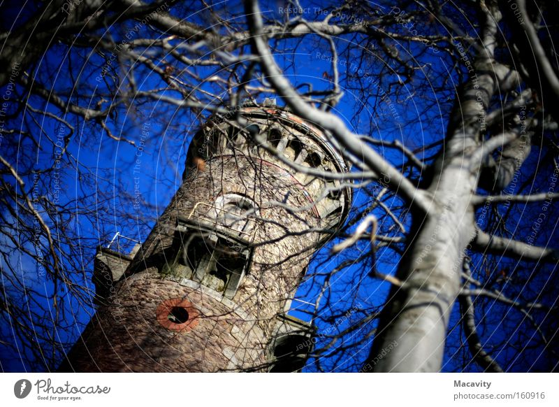 Sky Blue Tree Vacation & Travel Mountain Freedom Hiking Tall Trip Tourism Perspective Travel photography Tower Beautiful weather Castle Monument