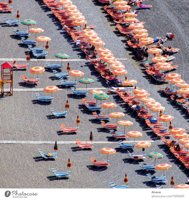 Alp/dream beach Vacation & Travel Tourism Freedom Summer vacation Sunbathing Beach Deckchair Sunshade Human being Life Crowd of people Beach life