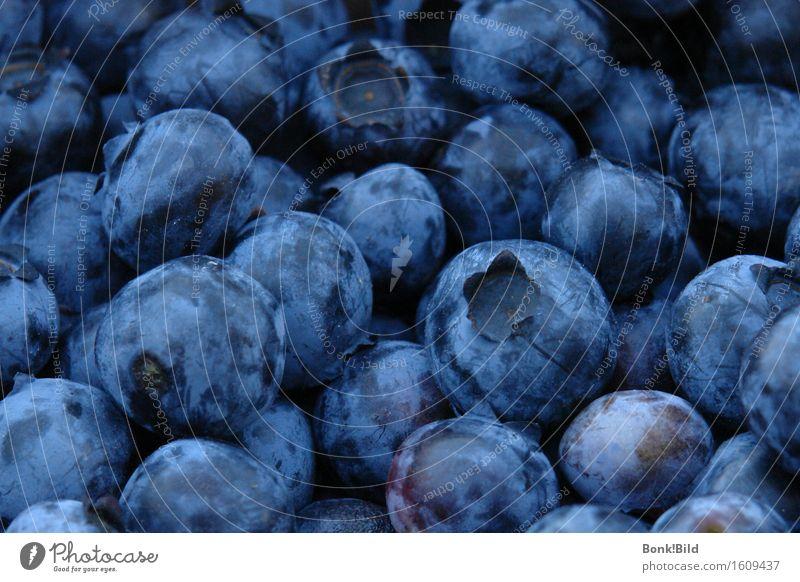 Blue Summer Beautiful Healthy Eating Joy Dark Black Life Happy Fruit Wild Fresh Esthetic Joie de vivre (Vitality)