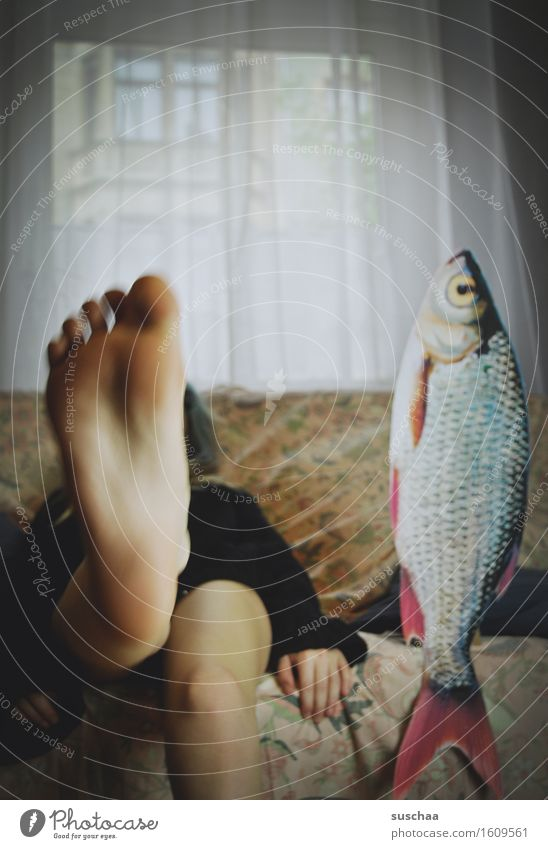 Young woman Girl Legs Feet Fish Sofa Living room Agree Toes Remixcase Sole of the foot