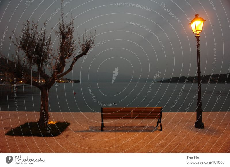 The Sound of Silence Relaxation Calm Landscape Water Weather Tree Mountain Alps Lakeside Dream Esthetic Emotions Longing Peace Lake Garda Italy Bench Lantern