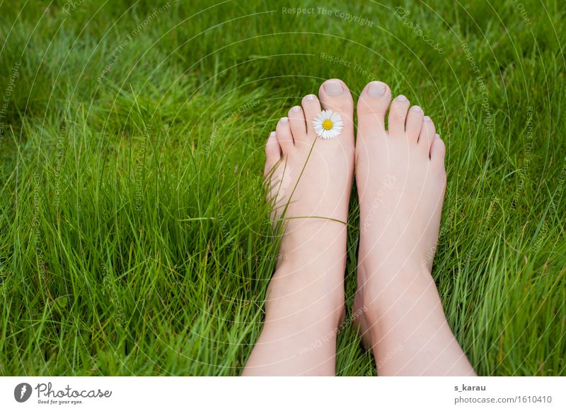 barefoot Lifestyle Vacation & Travel Trip Summer Human being Feet 1 Grass Relaxation Happiness Happy Green Joy Contentment Joie de vivre (Vitality) Nature