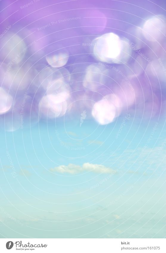 HIMMEL SEE Aviation Environment Sky Clouds Horizon Summer Climate Beautiful weather Glittering Dream Exceptional Kitsch Trashy Blue Violet Happy