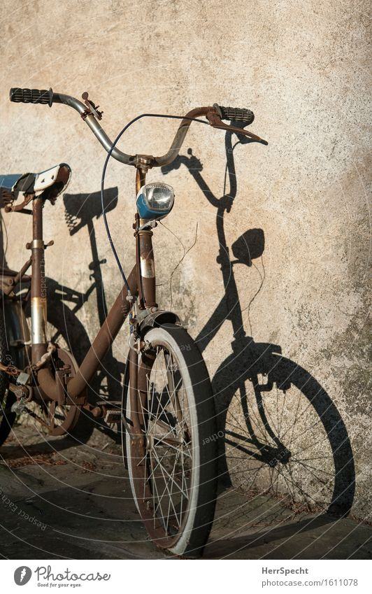 collector's item Italy Old town Wall (barrier) Wall (building) Facade Bicycle Broken Trashy Gloomy Brown Rust Shadow Ajar Parking mini wheel Folding bicycle