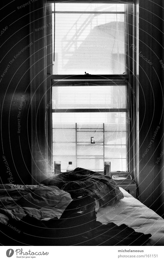 White Sun Black Dark Window Happy Bright Bed Furniture Moon Chaos Patch Black & white photo Speckled Celestial bodies and the universe