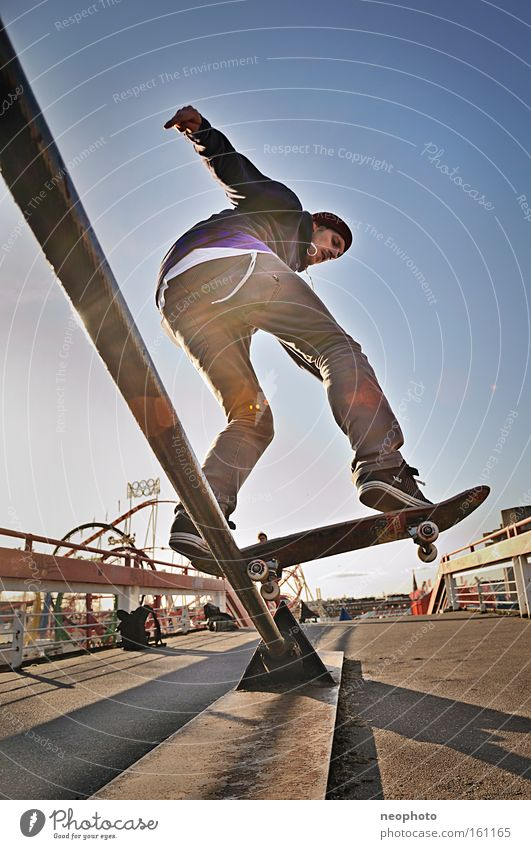 Joy Leisure and hobbies Bridge Dangerous Sports Skateboarding Skateboard Wooden board Dome Coil Roll Salto Closing time Recklessness Wire cable Extreme sports