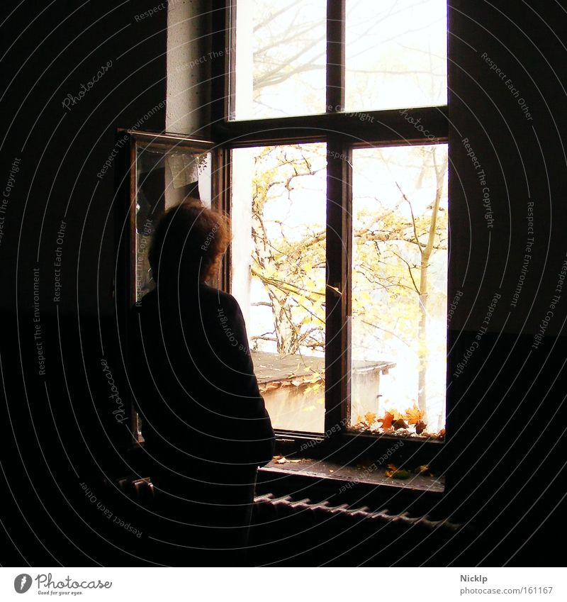 Young man standing in a dark room looking out an open window Calm Far-off places Youth (Young adults) 1 Human being 18 - 30 years Adults Autumn Window Heater