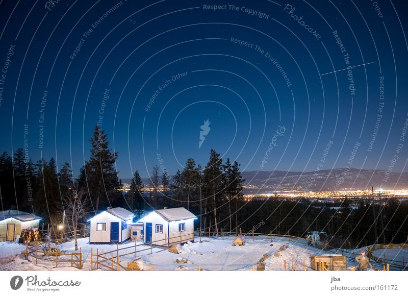 City Winter Vacation & Travel Cold Snow Airplane Vantage point Night Farm Fir tree Hut House (Residential Structure) Canada In transit Enclosure Night shot