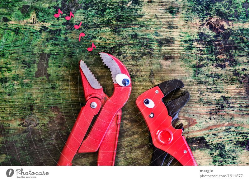 Will you sing me my song? Two red tongs with eyes on an old wooden table with red music - notes Craftsperson Workplace Construction site Services Craft (trade)