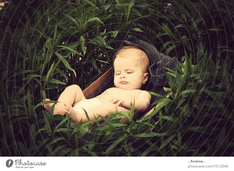 Dreaming in the green Feminine Child Baby Infancy 1 Human being 0 - 12 months To enjoy Lie Sleep Happy Small Naked Natural Curiosity Brown Green Emotions