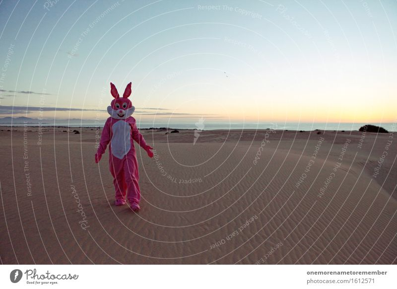 What's uuup? Art Work of art Esthetic To go for a walk Island Travel photography Traveling Travel guide Hare & Rabbit & Bunny Easter Desert Lost Irritation Sky
