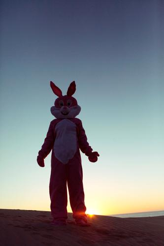 POS Art Esthetic Pink Hare & Rabbit & Bunny Hare ears Rabbit's foot Costume Joy Comical Funster The fun-loving society Disguised Easter Carnival Absurdity