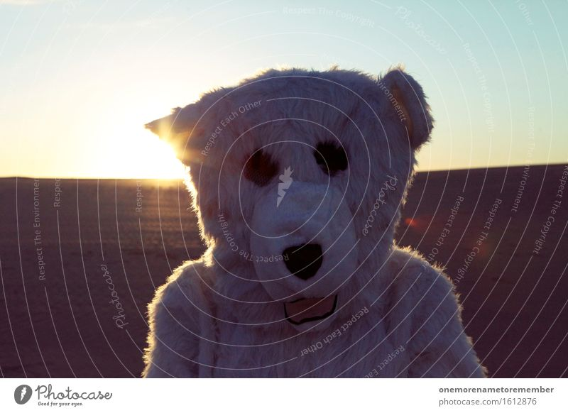 Polar bear on holiday Art Esthetic Polar Bear Profile Selfie White Pelt Head Warmth Hot Lost Irritation Colour photo Multicoloured Exterior shot Close-up Detail