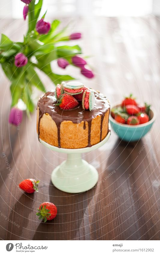 vegan cheesecake and macarons Dessert Candy Gateau Strawberry Nutrition Vegetarian diet Slow food Cake plate Summer Delicious Sweet Colour photo Interior shot