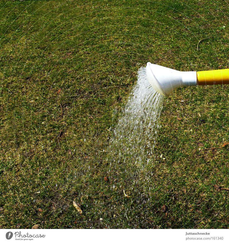 The garden season has begun Jug Watering can Cast Garden Grass Lawn Drought Dry Radiation Gardener Green Park Craft (trade) Juttas snail
