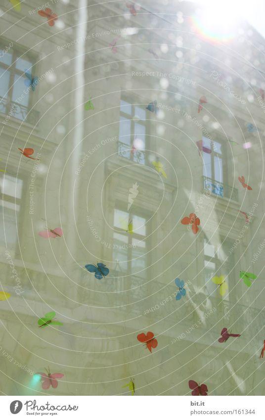 City Sun Joy Window Dream Art Feasts & Celebrations Culture Carnival Butterfly Joie de vivre (Vitality) Traffic infrastructure Fairy tale Fantasy literature Fantasy Optimism