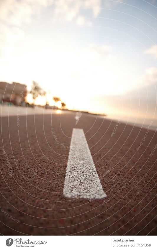 The way Street Lanes & trails Sun Sunset Sign Majorca Cycle path Traffic infrastructure Emotions