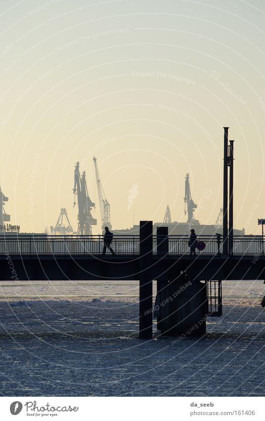 Winter Ice Hamburg Bridge River Harbour Crane Elbe Dockside crane