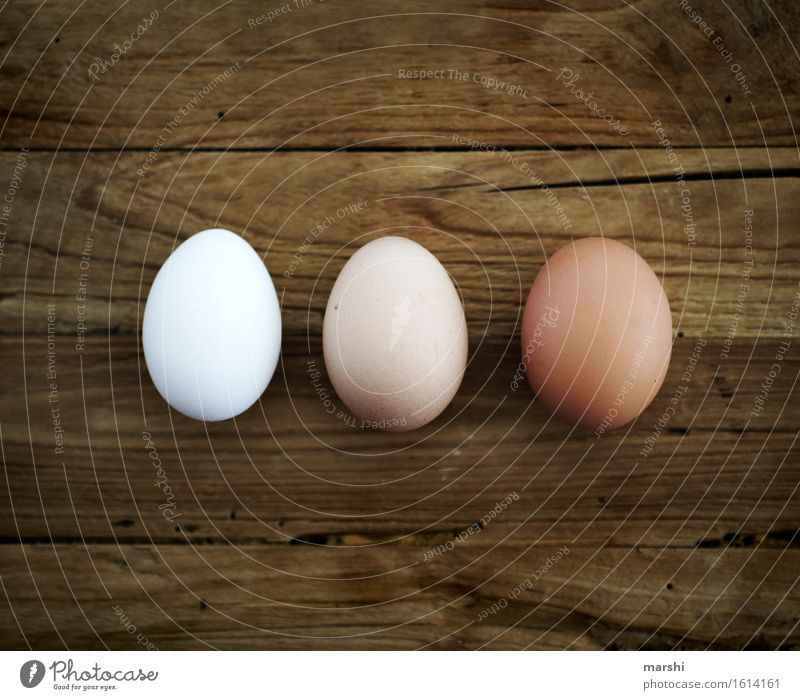 threesome Food Nutrition Moody Egg Hen's egg 3 Eggshell Easter Cholesterol Colour photo Interior shot Detail