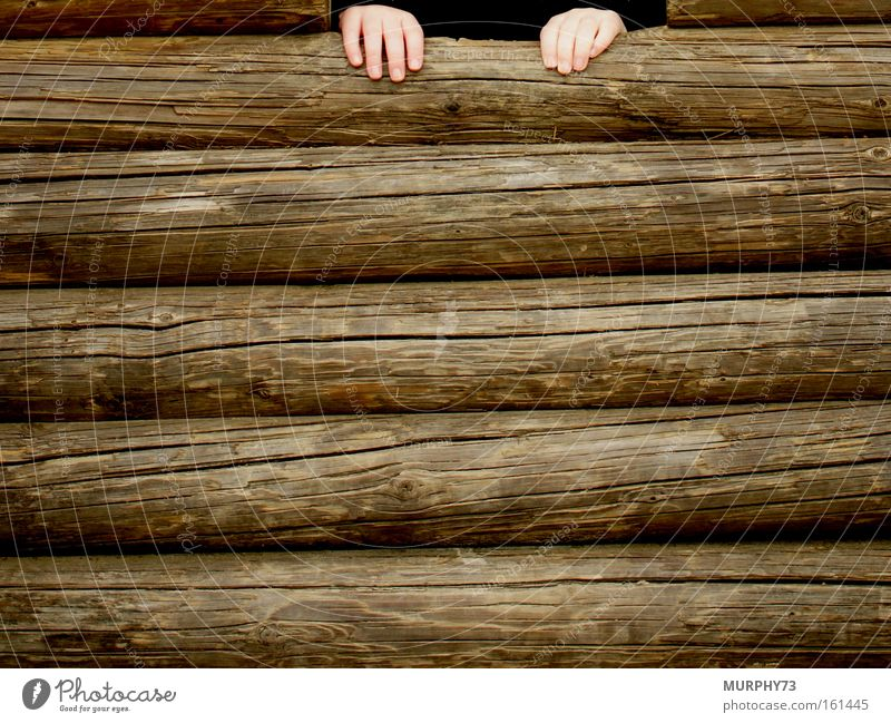 Help, I can't get up... Playing Toddler Hand Wood Children`s hand Wooden wall Wall (building) Tree trunk Helpless Wood grain Woody Detail